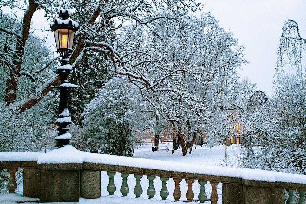 Newmaninstitutets högskola utbildar i teologi, filosofi och kultur. Vi finns centralt i Uppsala, nära universitetsparken.